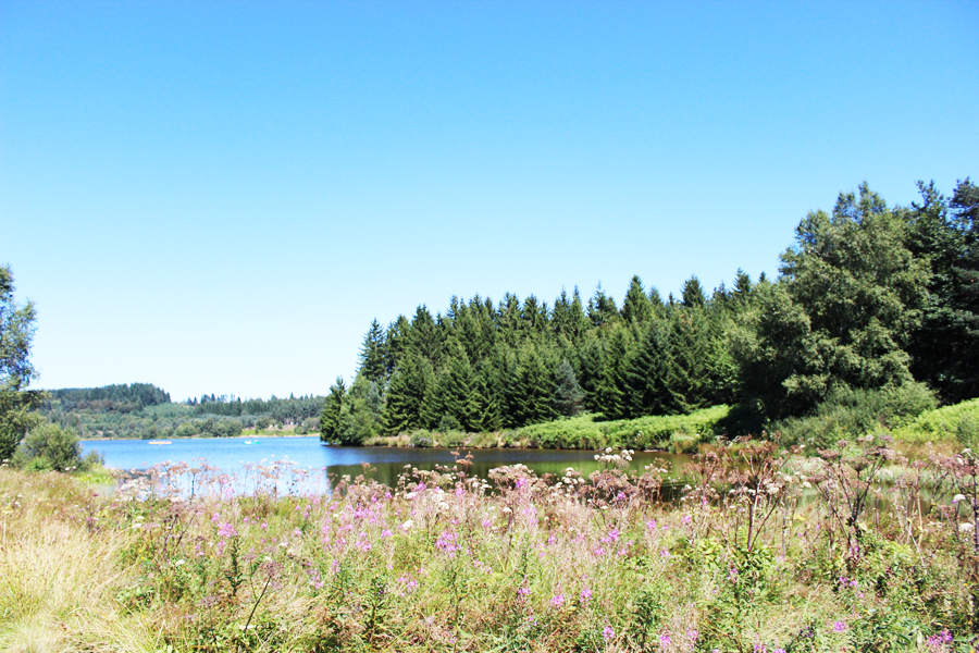 lac devesset ardèche