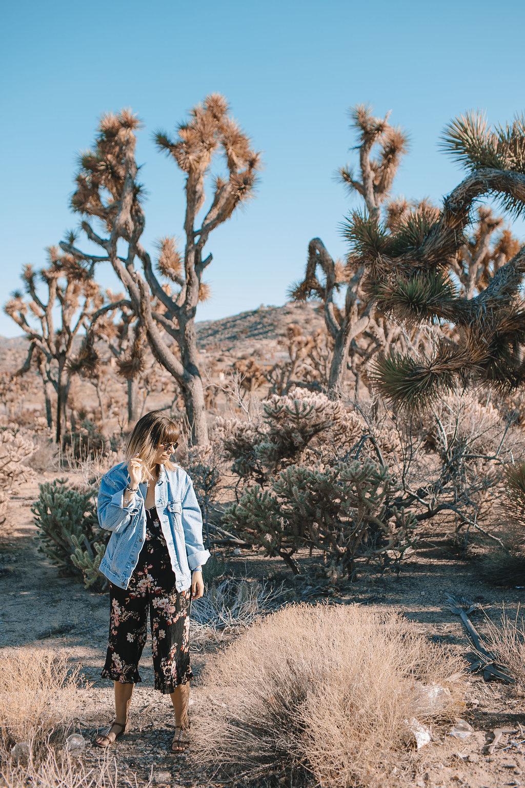 yucca-valley-californie